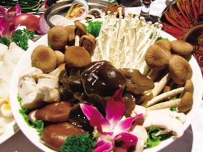 多种常见菌菇,这几种你有吃过吗?